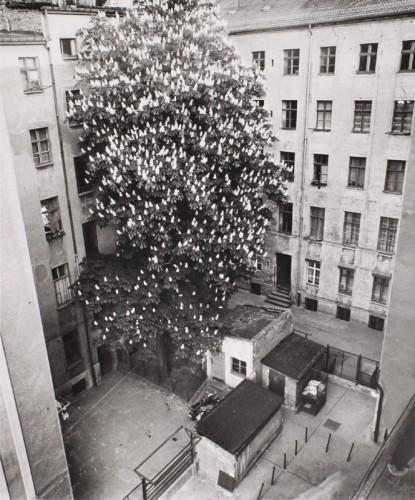 Am Rande der stehenden Zeit. Berlin Nordost. 1972-1990. Manfred Paul. Fotografien - Mit freundlicher Genehmigung von photo edition berlin