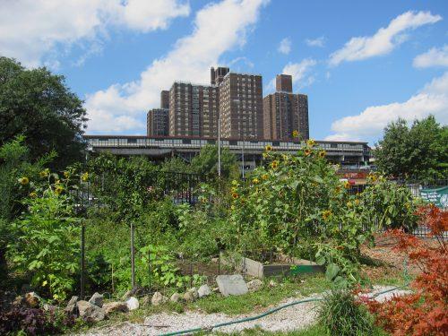Urbaner Garten in Nordamerika